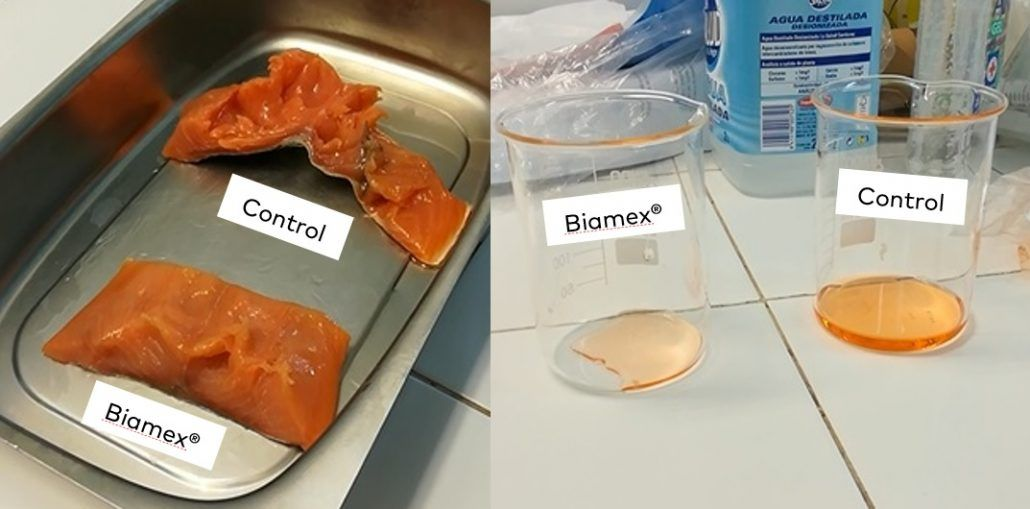 Comparison between fresh salmon with and without Fermitrat Export, an Amerex's natural solution. Salmon without the preservative has a completely discarded texture, and a greater liquid formation