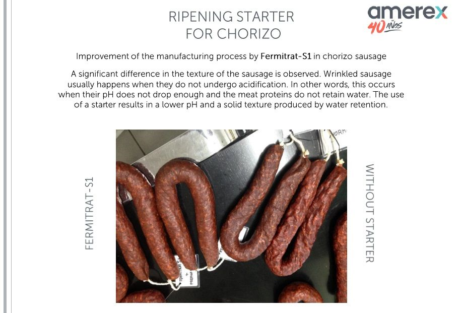This picture shows a comparison between a dried sausage (chorizo) manufactured with Fermitrat-S1, one of our starters, and the same chorizo without a starter. Differences in texture can be observed, the dried sausage with the starter shows a much solid texture produced by water retention and a lower pH. On the other hand, the control dried sausage presents a typical wrinkle, because of the no retention of water by the meat proteins as the result of no acidification.
