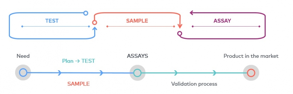 Correlation between the concepts test, sample and assay, from the need for a product that involves testing with a plan and sample management, to the establishment of the product on the market after the validation process.